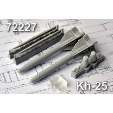 AMC_72227 Kh-25