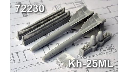 AMC_72230 Kh-25ML